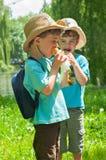 Los muchachos gemelos comieron el helado Imagen de archivo libre de regalías