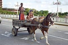 Los muchachos montan por el caballo y el carro en la calle Recife Fotografía de archivo