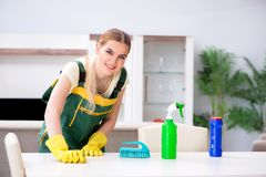 Los muebles profesionales del apartamento de la limpieza del limpiador imagen de archivo