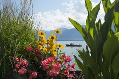 Los muelles Flor-alineados hermosos de Montreux, Suiza Imagenes de archivo