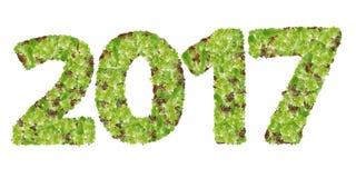 Los números 2017 hicieron de la verdura de hoja del hidrocultivo Imagenes de archivo