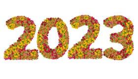 Los números 2023 hicieron de las flores de los Zinnias Foto de archivo libre de regalías