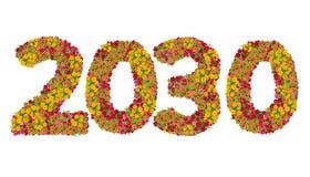 Los números 2030 hicieron de las flores de los Zinnias Imagenes de archivo
