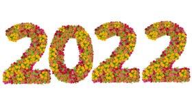 Los números 2020 hicieron de las flores de los Zinnias Imágenes de archivo libres de regalías