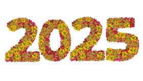 Los números 2025 hicieron de las flores de los Zinnias Fotos de archivo