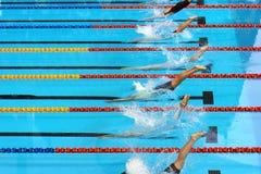 Los nadadores se zambullen en comienzo Imagenes de archivo