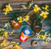 Los narcisos florecen en jarros de cerámica y dispersado en una tabla Foto de archivo