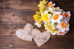 Los narcisos frescos del amarillo de la primavera florecen y dos corazones decorativos Imagenes de archivo