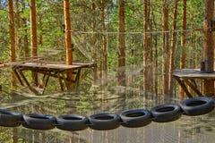 Los neumáticos que cuelgan en cuerda parquean en un bosque del pino Imágenes de archivo libres de regalías