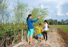 Los niños asiáticos, bong dien dien, sesbana de Sesbania, delta del Mekong fotografía de archivo libre de regalías