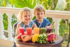 Los niños beben los smoothies sanos coloridos La sandía, la papaya, el mango, la espinaca y el dragón dan fruto Smoothies, jugos foto de archivo libre de regalías