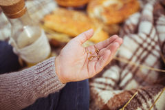 Los niños dan con los granos de un trigo Imagen de archivo