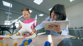 Los niños de trabajo examinan un abejón, cierre para arriba metrajes