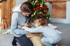 Los niños desempaquetan el regalo del perro para la Navidad fotografía de archivo