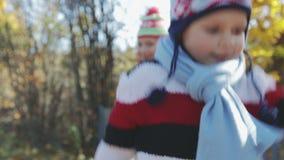 Los niños divertidos se divierten que juega y que salta con las hojas de arce en parque del otoño almacen de metraje de vídeo