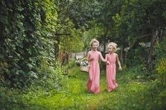Los niños en vestidos rosados largos que caminan abajo del callejón 6583 del jardín Imágenes de archivo libres de regalías