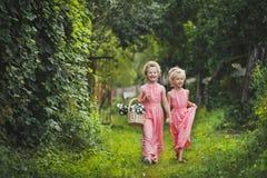 Los niños en vestidos rosados largos que caminan abajo del callejón 6584 del jardín Fotos de archivo