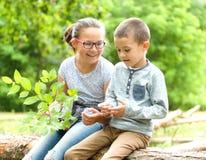 Los niños están jugando en parque del otoño foto de archivo
