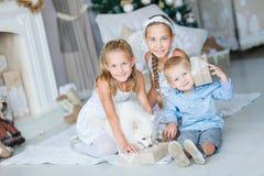 Los niños felices acercan al árbol de Navidad Foto de archivo