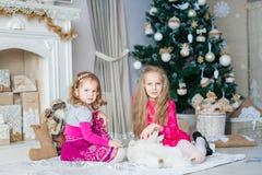 Los niños felices acercan al árbol de Navidad Fotos de archivo