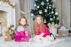 Los niños felices acercan al árbol de Navidad Fotografía de archivo libre de regalías
