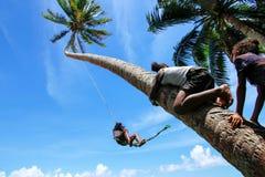 Los niños locales que balancean en una cuerda balancean en el pueblo de Lavena, Taveuni I Fotografía de archivo libre de regalías