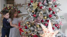 Los niños se vistieron en ropa elegante adornan un árbol de rosas Humor festivo almacen de video