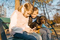 Los niños sonrientes muchacho y muchacha que se sientan en banco en el parque con el perro basset del perro, mejores amigos de lo fotografía de archivo