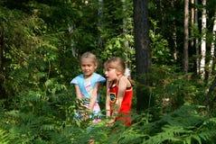 Los niños tienen miedo en madera Foto de archivo libre de regalías