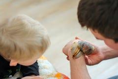 Los niños ven un caracol gigante en la mano de un adulto pet imagenes de archivo