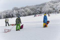Los niños y sus padres sledding en el lado de la montaña Imágenes de archivo libres de regalías