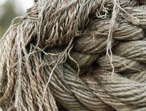 Los nudos y las fibras de la nave vieja rope la opinión del primer Imagenes de archivo