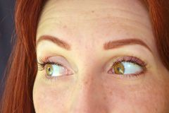 Los ojos de la muchacha con el pelo rojo y los ojos verdes con extensiones de la pestaña en un fondo oscuro miran emocionalmente foto de archivo libre de regalías