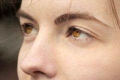 Los ojos se cierran para arriba Foto macra fotografía de archivo