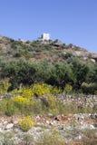 Los olivos y las flores del amarillo acercan a stoupa en mani en el pelo griego Imágenes de archivo libres de regalías