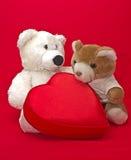 Los osos de peluche con la caja de regalo en un corazón forman Imágenes de archivo libres de regalías