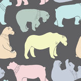 Los osos modelan en vector Foto de archivo