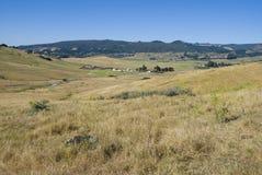 Los Osos Vallei, Californië Royalty-vrije Stock Afbeeldingen