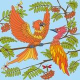 Los pájaros cantan canciones. Textura inconsútil. Imagen de archivo libre de regalías