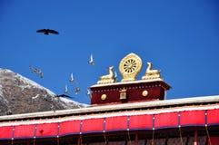 Los pájaros de vuelo y dos ciervos de oro que flanquean un Dharma ruedan Fotografía de archivo