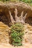 Los pájaros jerarquizan los detalles en el parque Guell en Barcelona Fotos de archivo