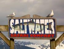 Los pájaros que se encaraman en un ` s de la compañía de carta de la pesca firman en el seward Fotografía de archivo libre de regalías