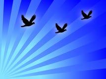 Los pájaros vuelan ilustración del vector