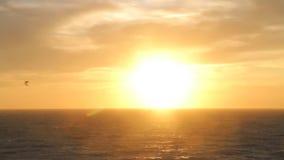 Los pájaros vuelan contra el viento, con puesta del sol en fondo en la playa Mar y sol almacen de metraje de vídeo