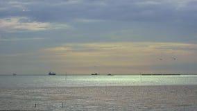 Los pájaros vuelan en el golfo de Tailandia en la puesta del sol almacen de video