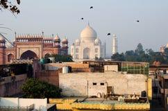 Los pájaros vuelan sobre Taj Mahal Visión panorámica desde el tejado imagen de archivo