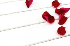 Los pétalos de Rose con subieron Imagen de archivo libre de regalías