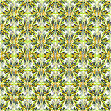 Los pétalos negros y anaranjados del verde amarillo de la flor en un fondo blanco vector el ejemplo Fotos de archivo libres de regalías