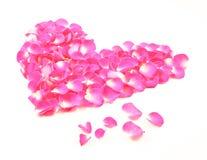 Los pétalos rosados del corazón sueltan Foto de archivo libre de regalías
