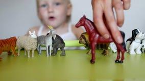 Los padres enseñan a un pequeño niño a distinguir entre animales, un juego del ` s del niño con los juguetes y padres, primer, ca almacen de metraje de vídeo